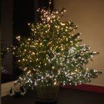 kerst tips joy feest